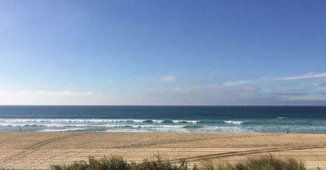 La côte sauvage landaise