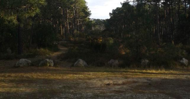 Sentiers de randonnées Contis