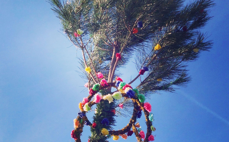 En mai, découvrez les traditionnelles mayades landaises